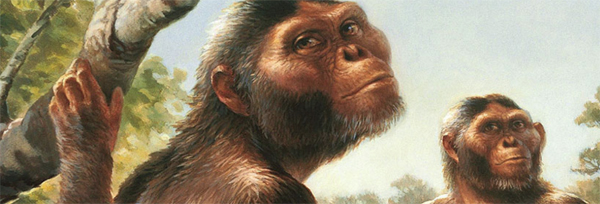Lucy (so named) was a hominid living about 3.14 million years ago.