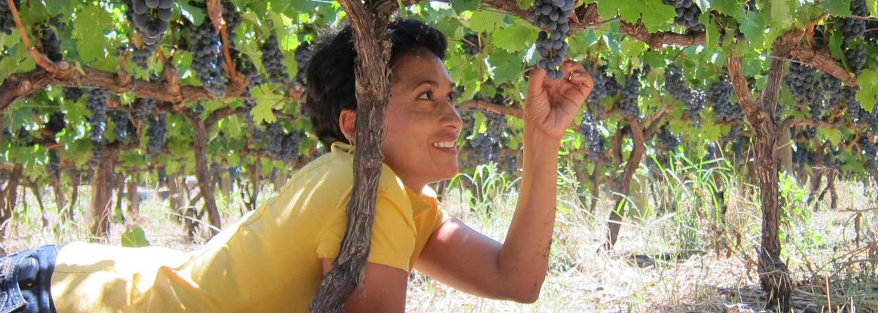 Carmen Stevens, the first black winemaker in South Africa