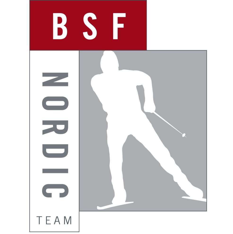 BSF.jpg