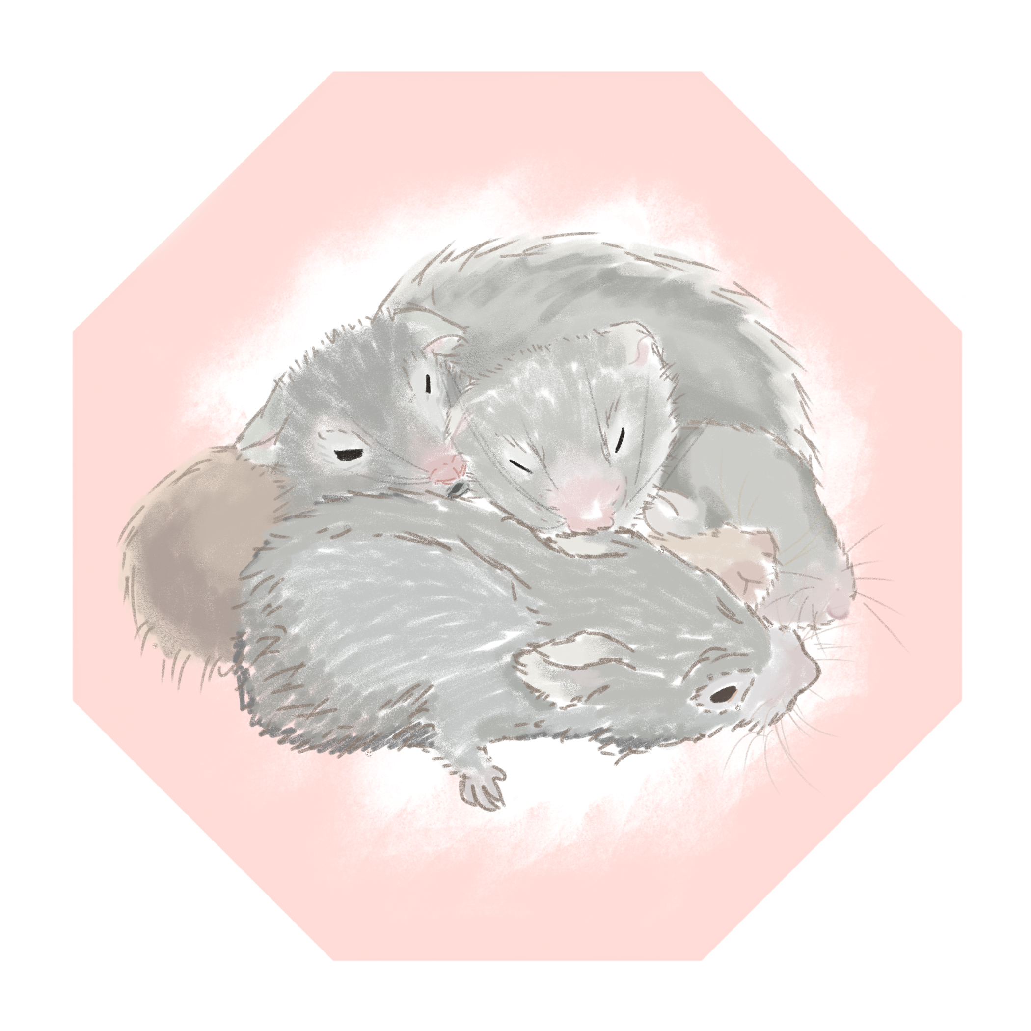 a snuggle of hamsters EDITED.png