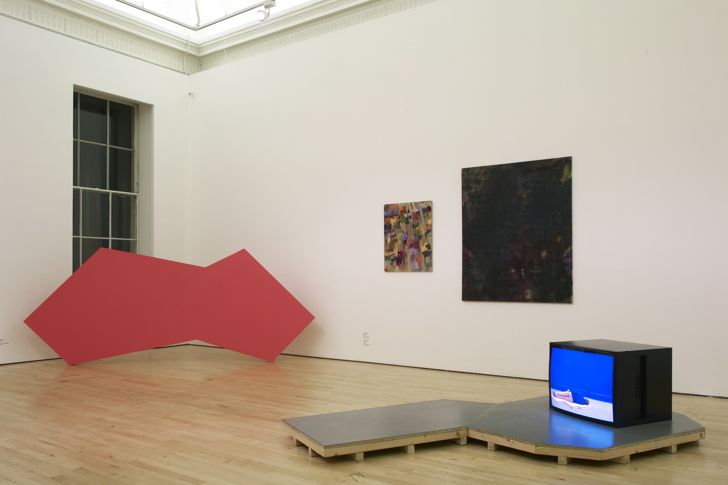 New Contemporaries   Exhibition view, ICA, London  2012