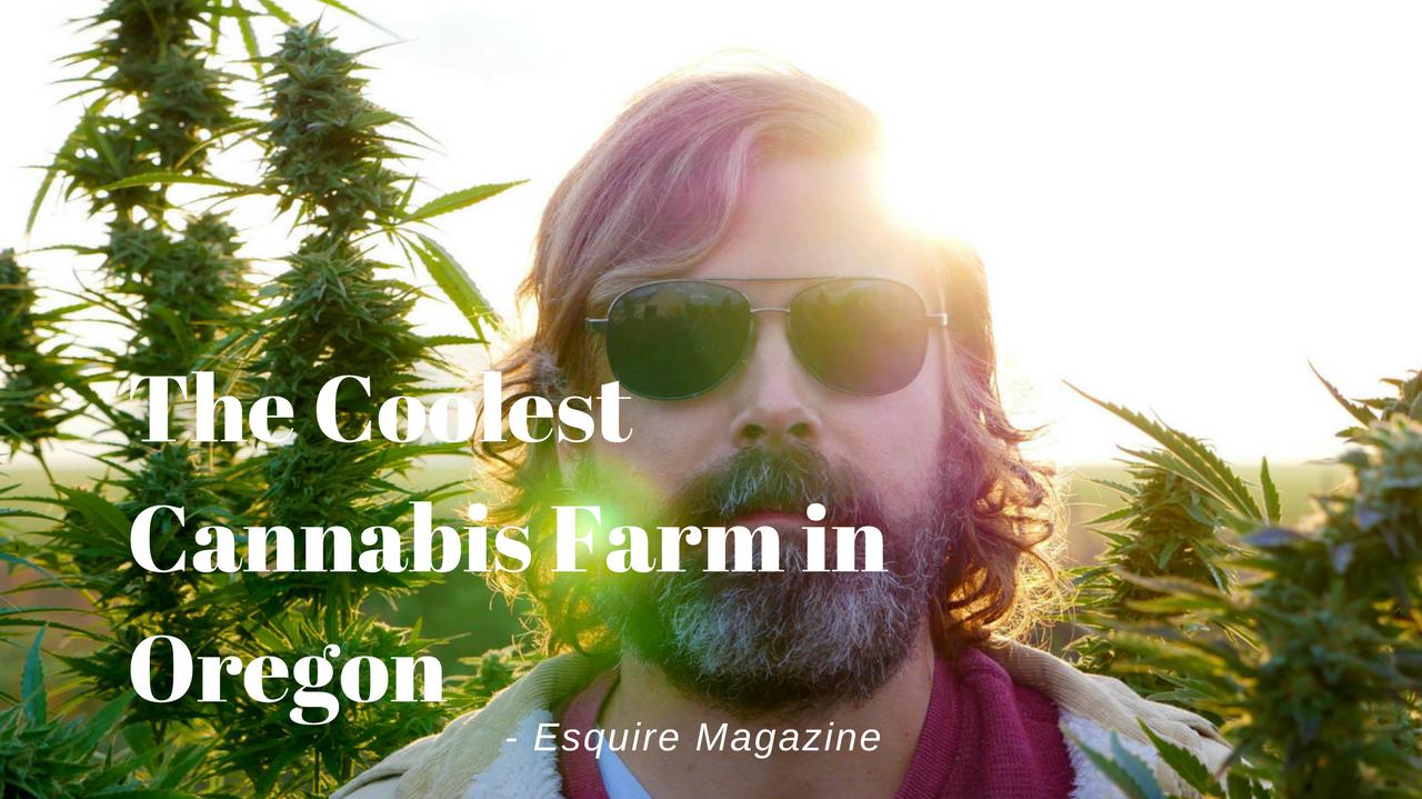 HiFi Farms Homepage Esquire Magazine