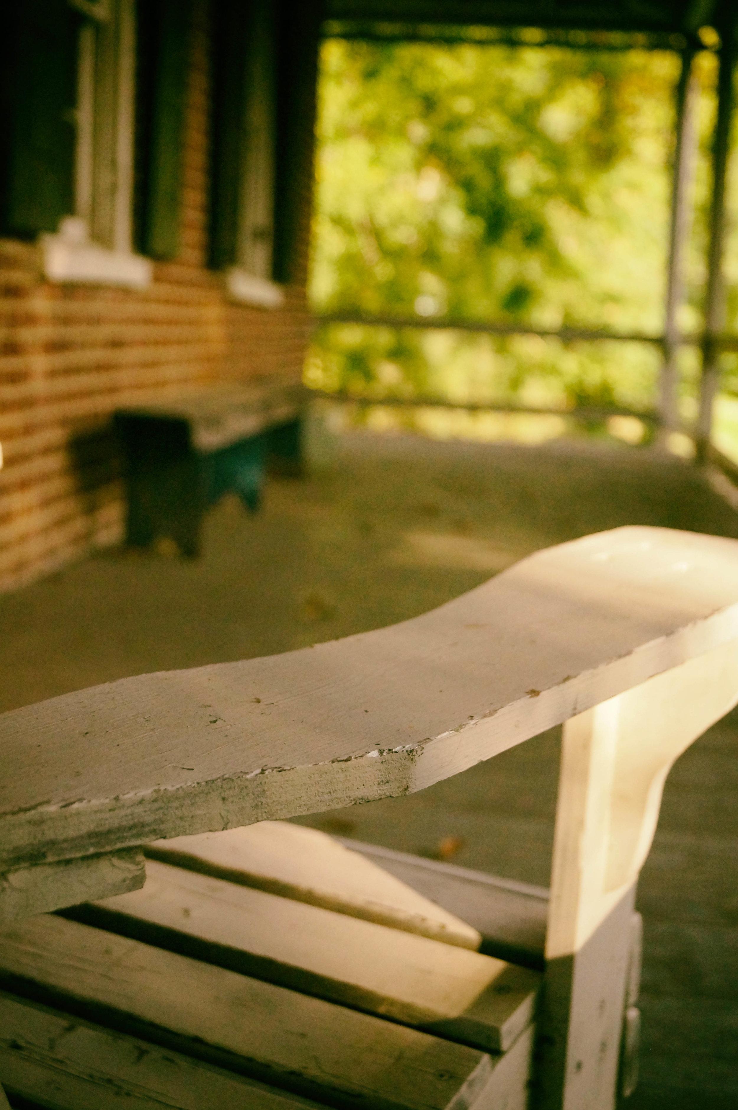 That Summer Seemed to Last Forever1.jpg