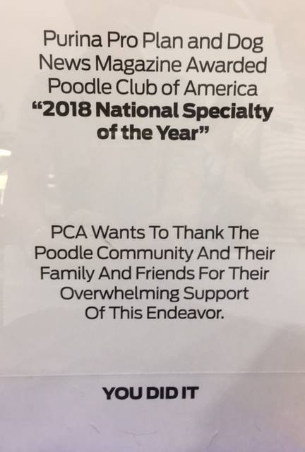 Poodle Club of America wins National Specialty of the Year!