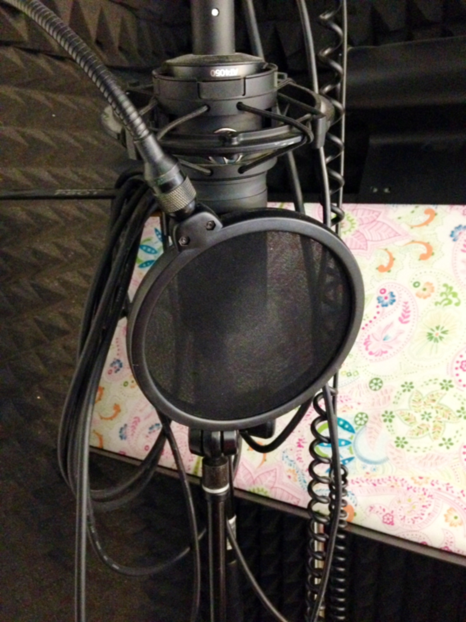 mic pic:sound booth.JPG