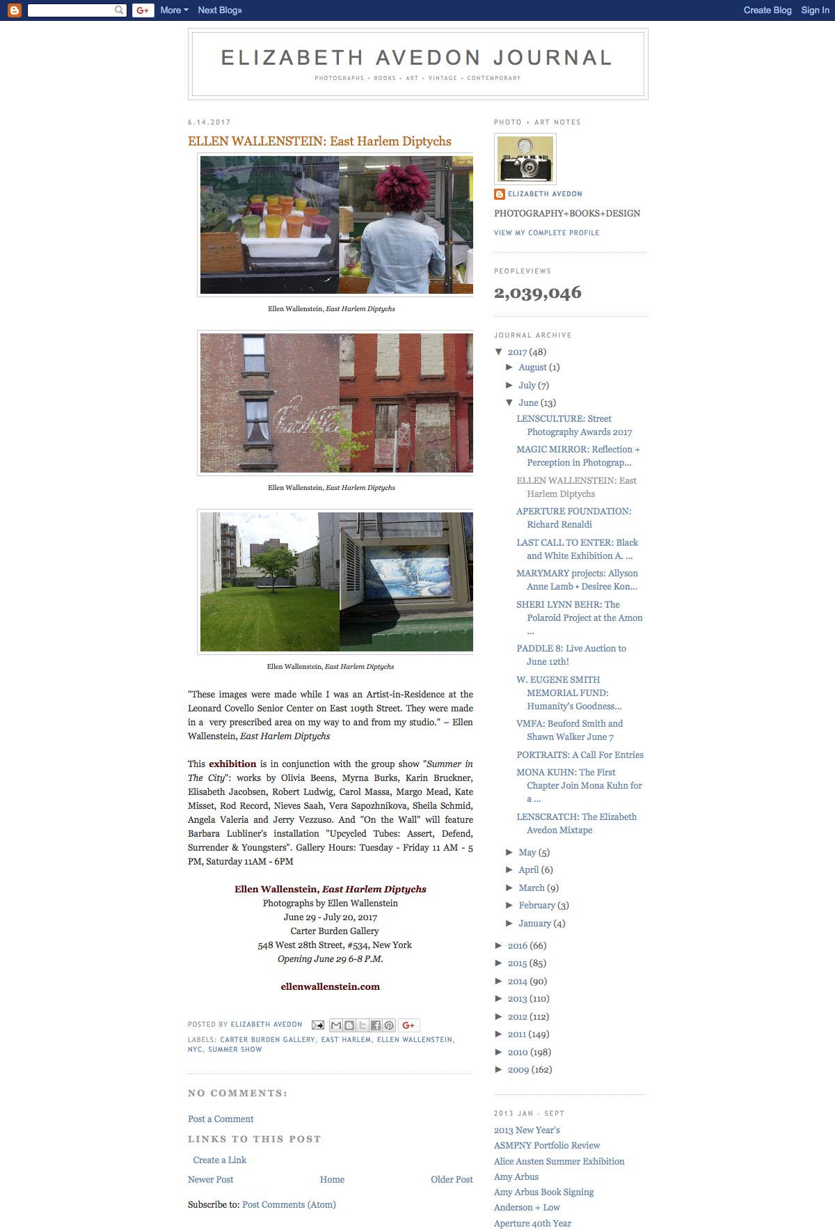 20170614 ELIZABETH AVEDON JOURNAL-ELLEN WALLENSTEIN-East Harlem Diptychs (2017-08-18 22-30-22).jpg