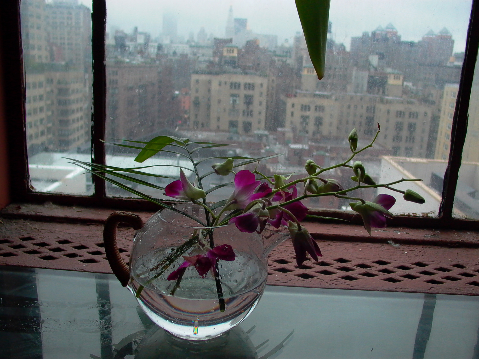 Vase and Orchid