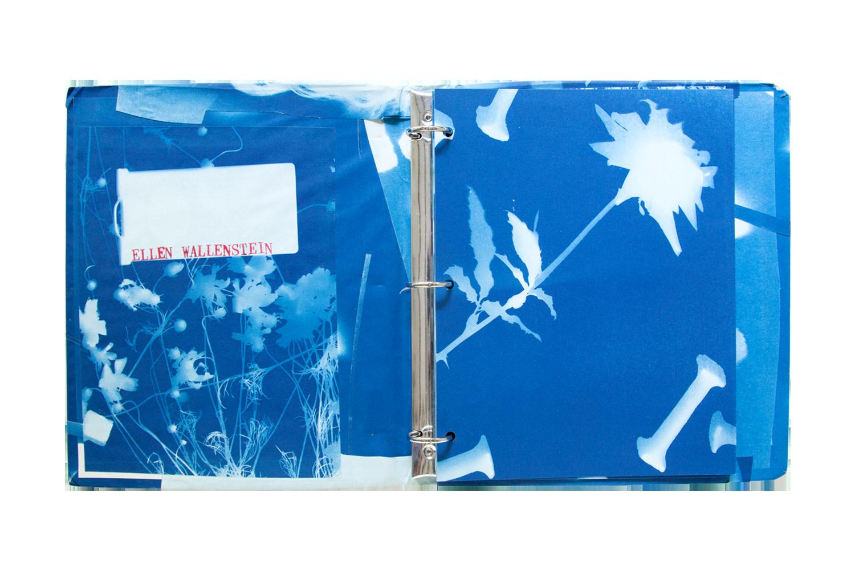 218_Blue-Prints-(1985)_-copy.png.png