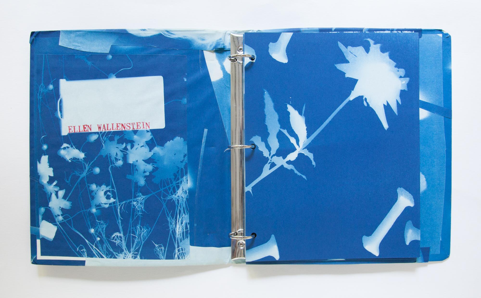 218_Blue Prints (1985)_.jpg