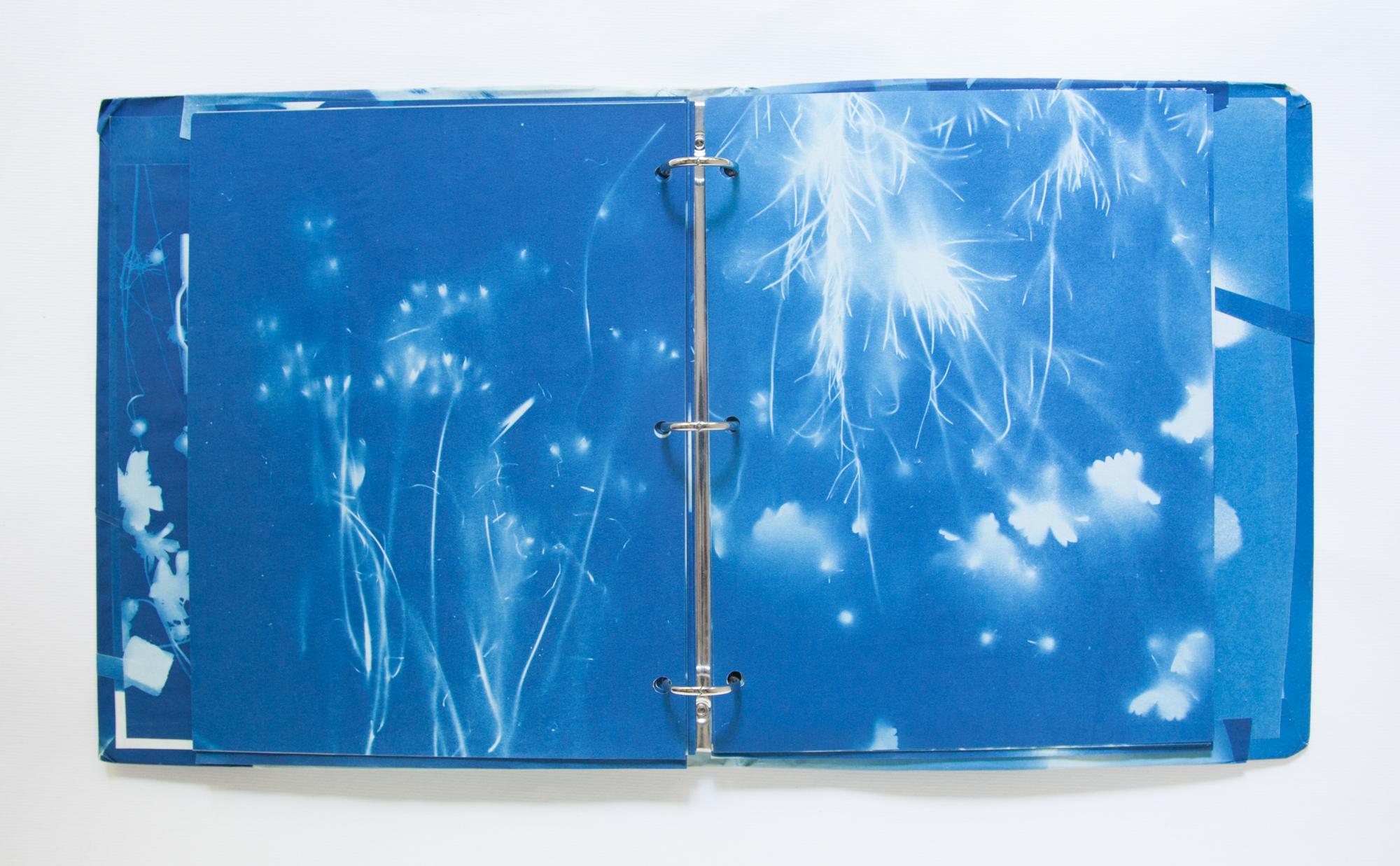 226_Blue Prints (1985)_.jpg