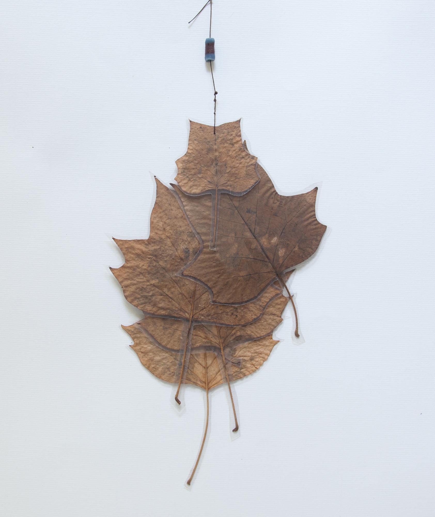 233_A New Leaf (2013)_.jpg