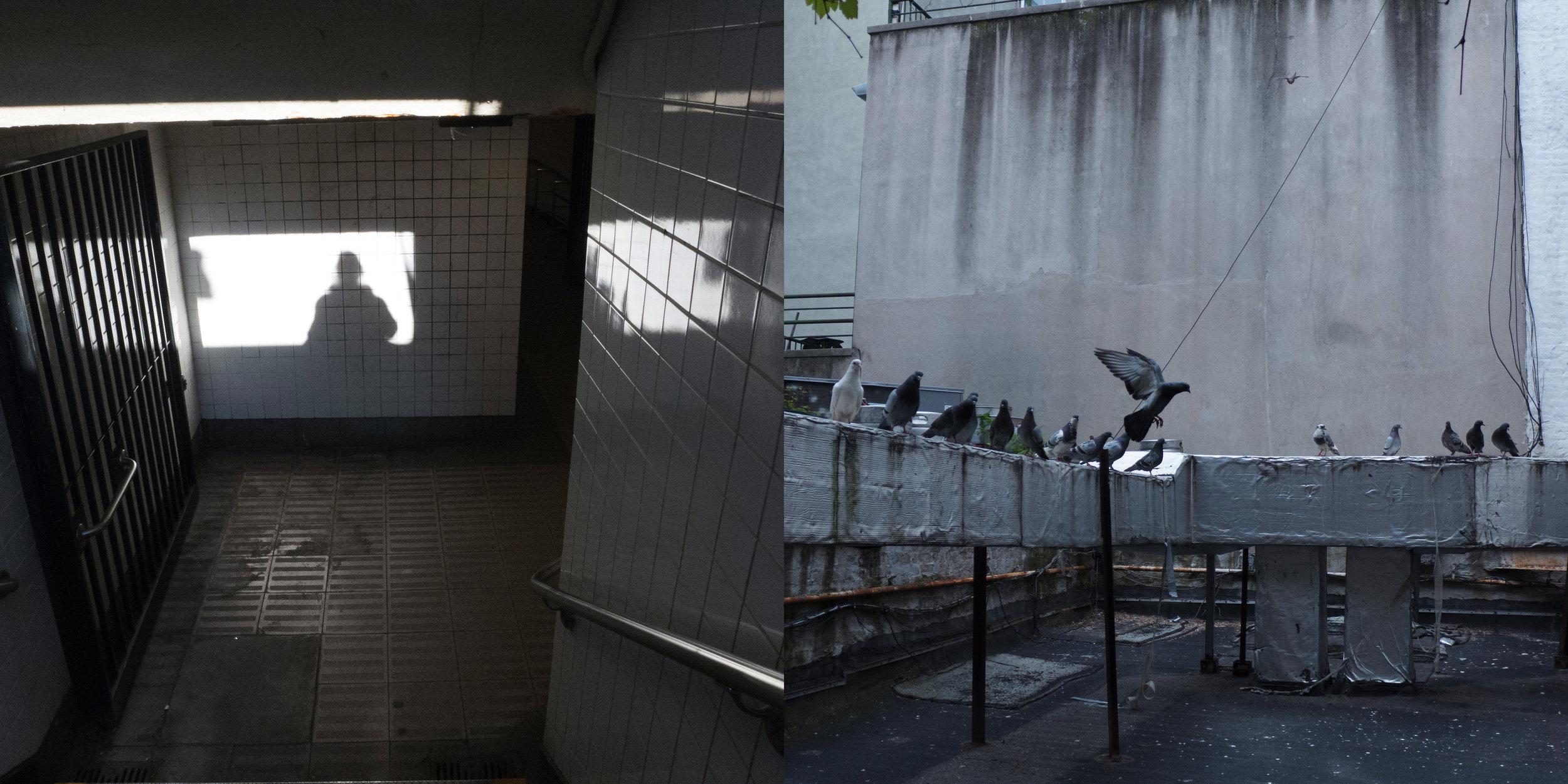 Self-portrait, Canal Street & Birds, New York Central Art Supply