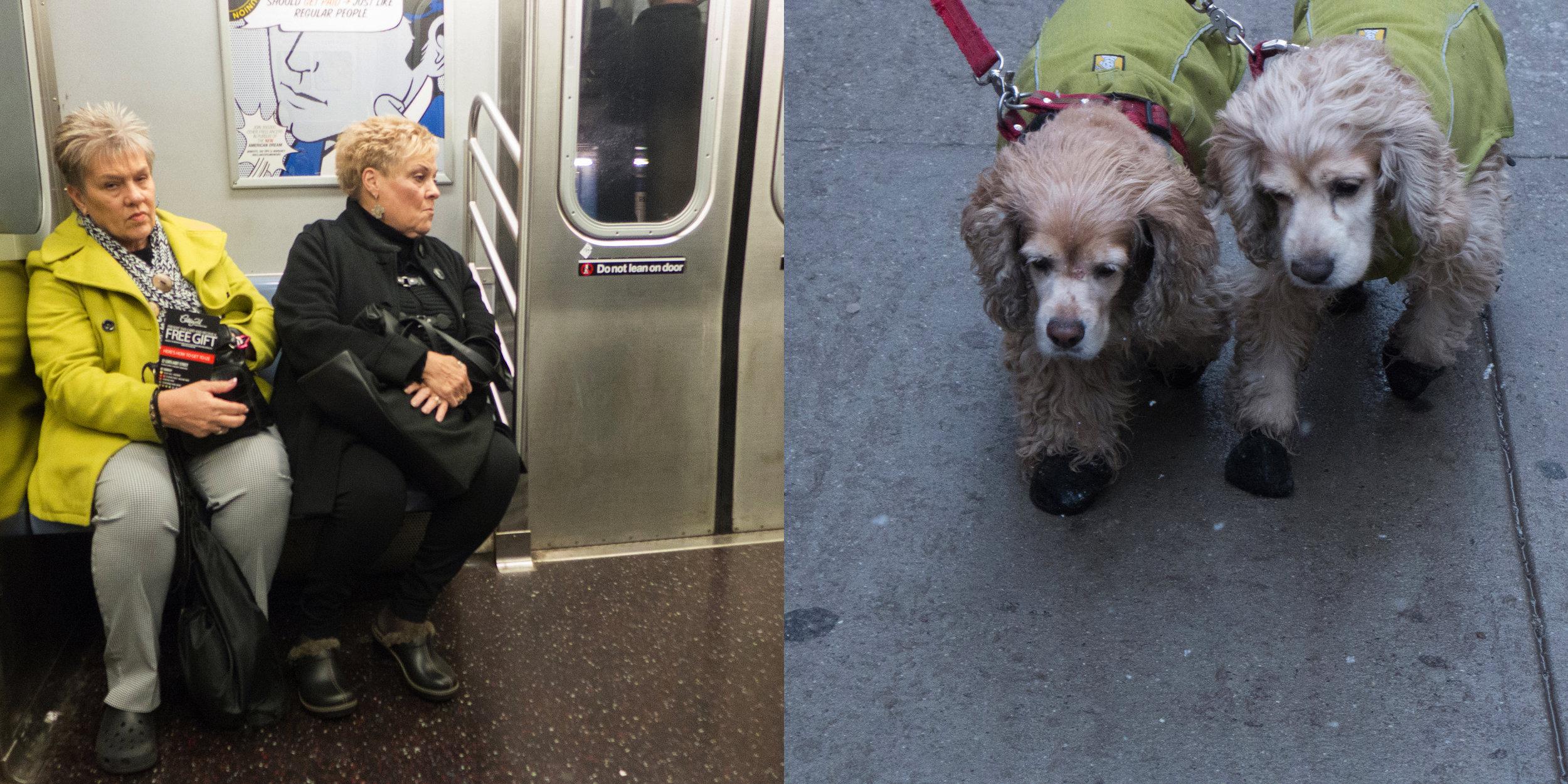 Subway Twins & Twin Dogs