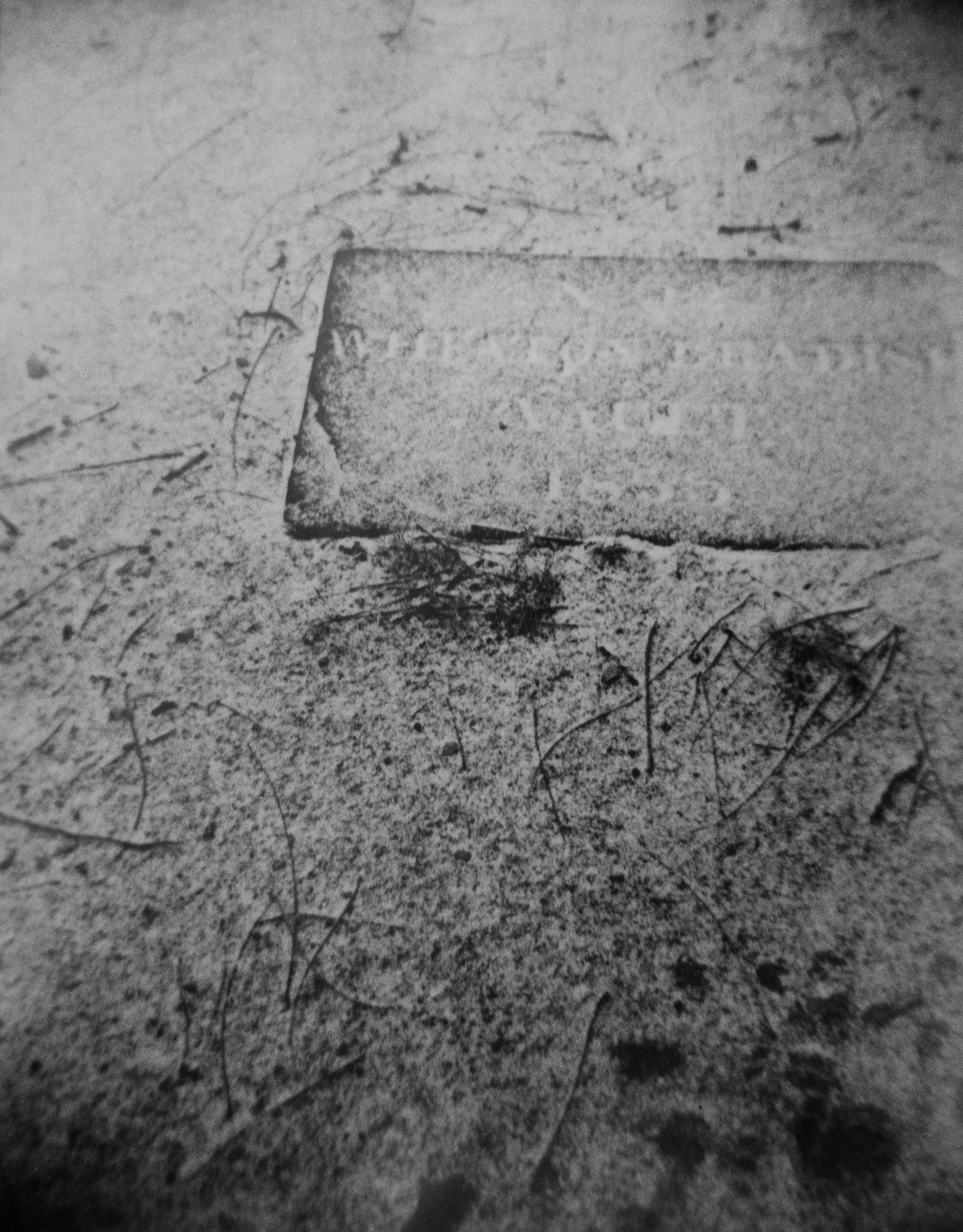 4_Grave Ground_St. Mark's Church-in-the-Bowerie, 1999-2000_.jpg