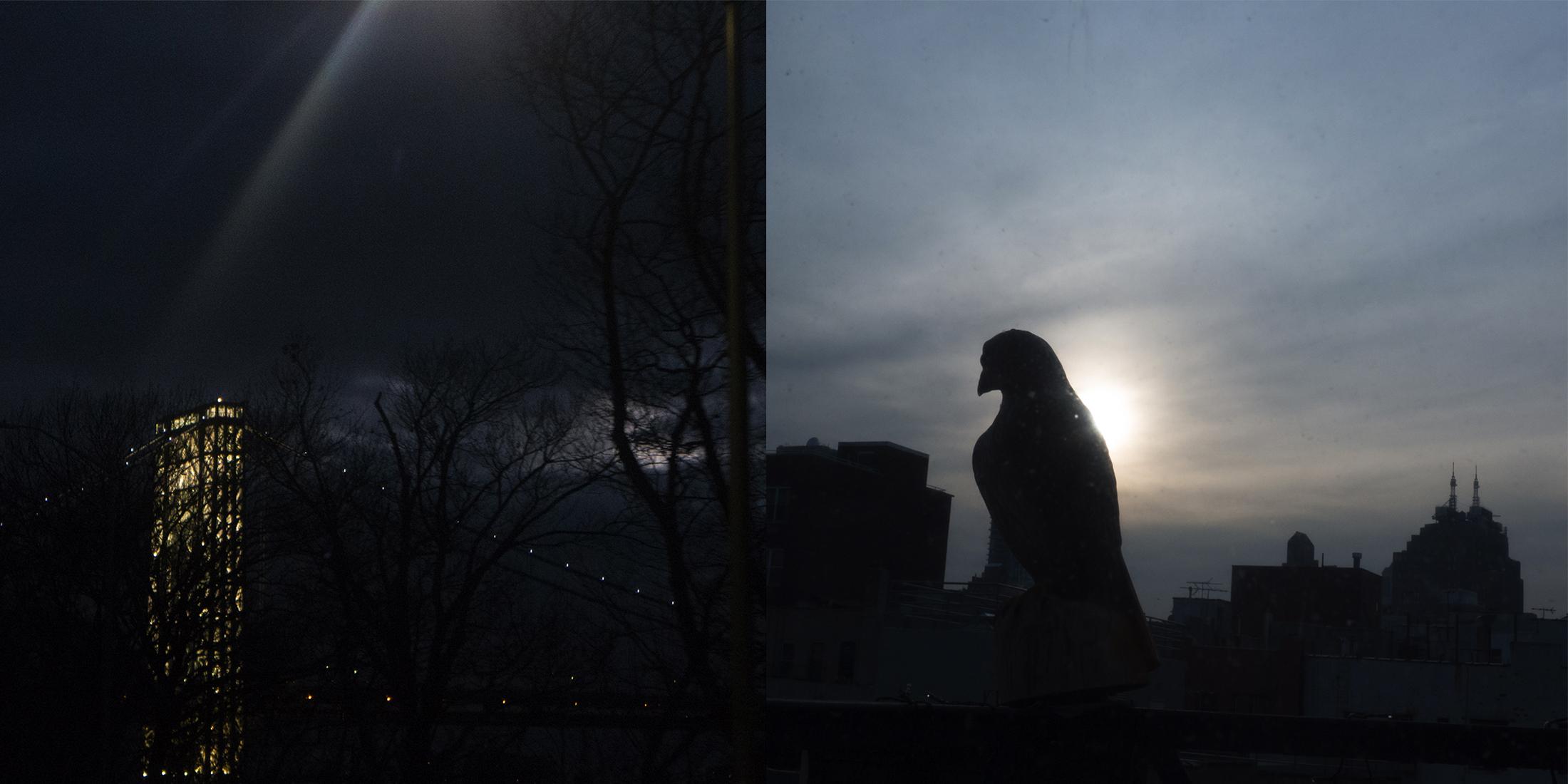 GWB at Night/Pigeon, Chinatown