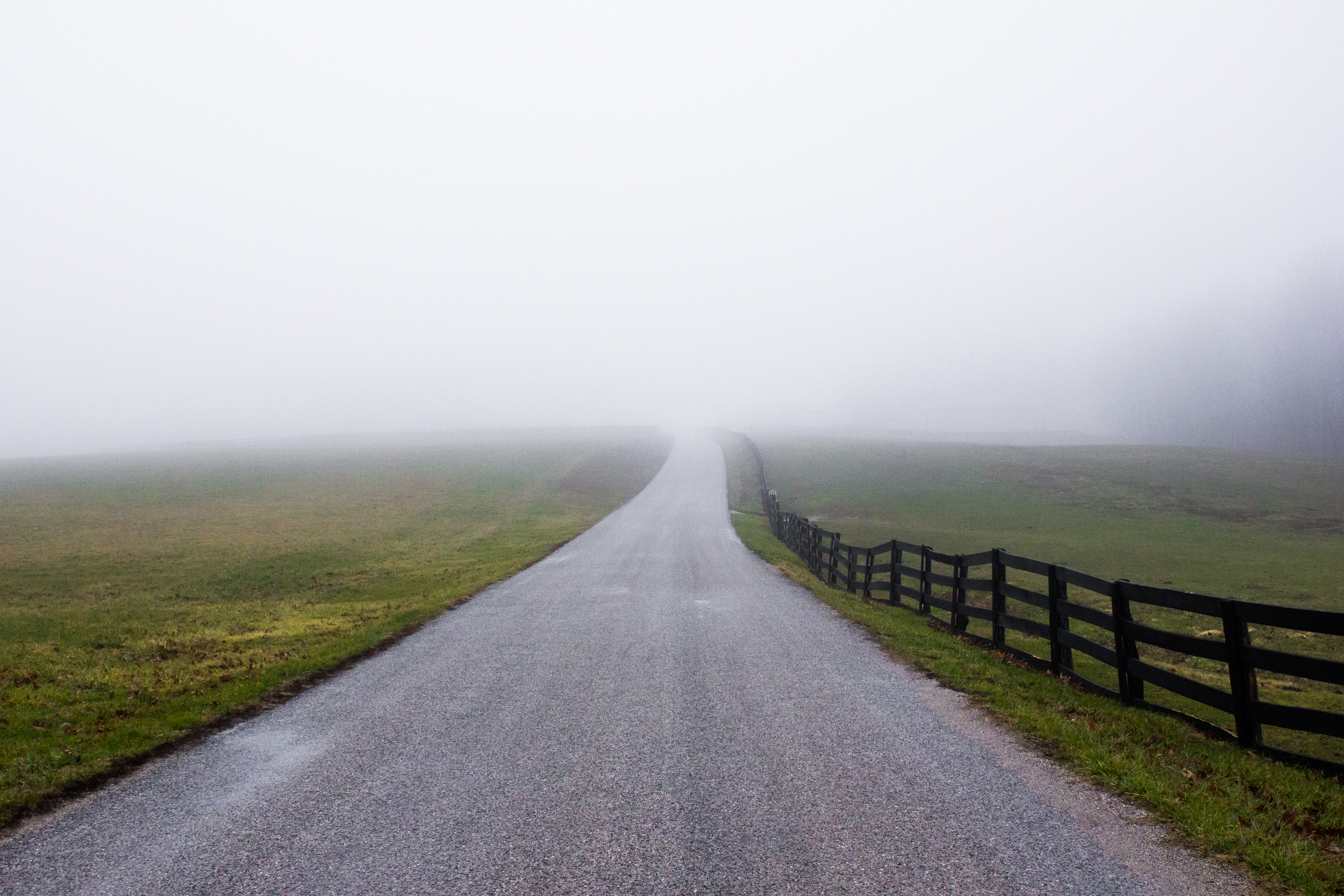 newfreedom-fog.jpg
