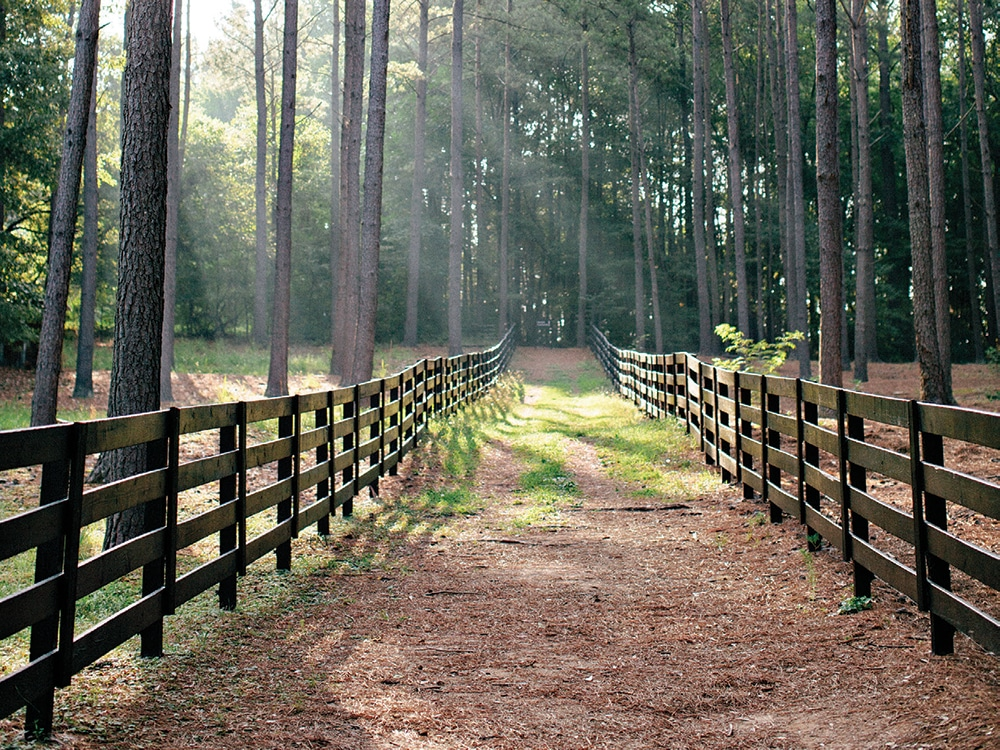 Serenbe Farms - Experience calm and serenity during your Corporate Retreat.