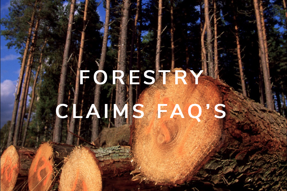 Forestry FAQ's.png
