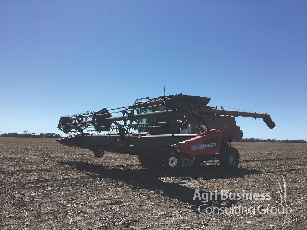 Broadacre Harvester, Darling Downs - Queensland
