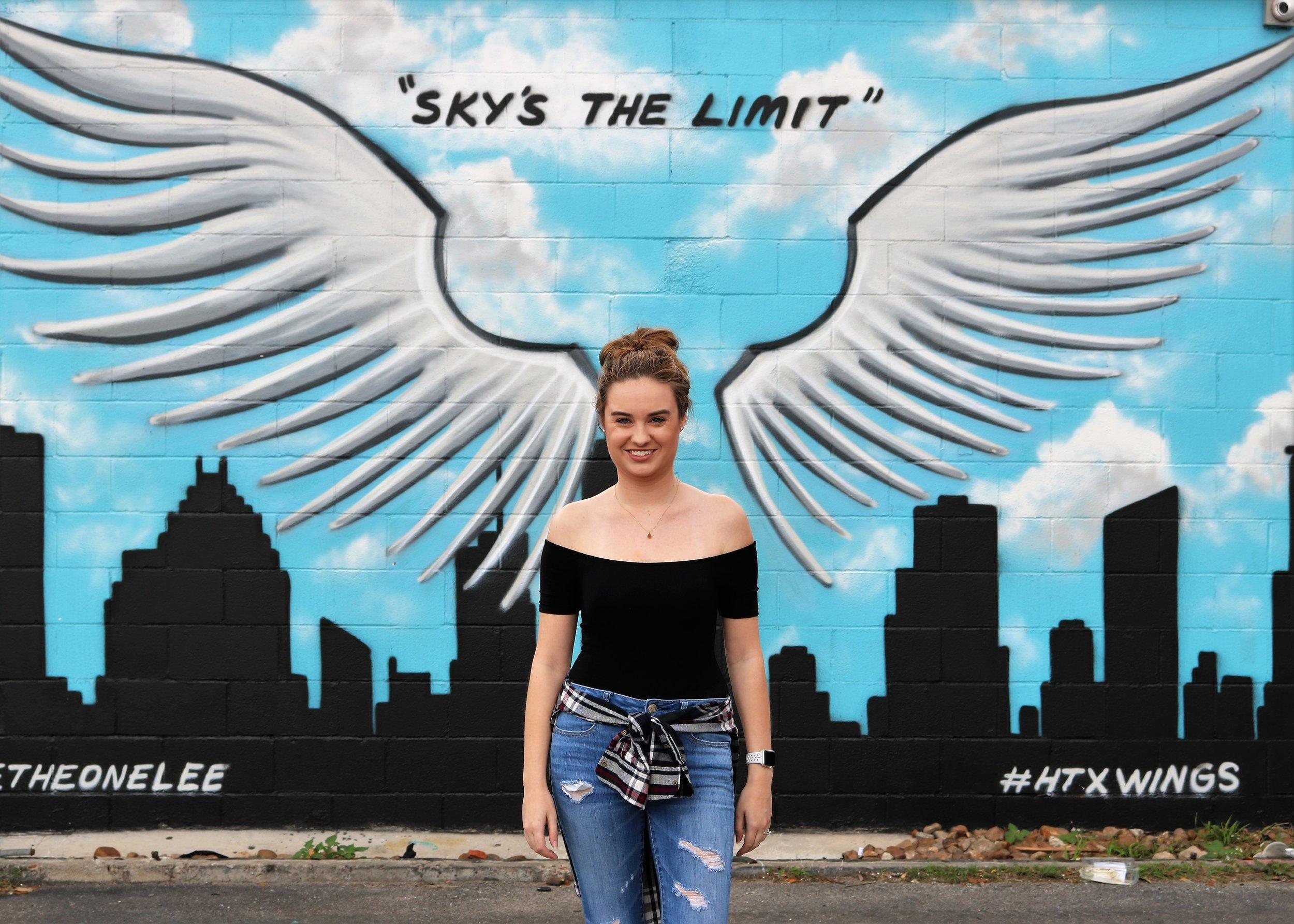 houston texas mural street art wings