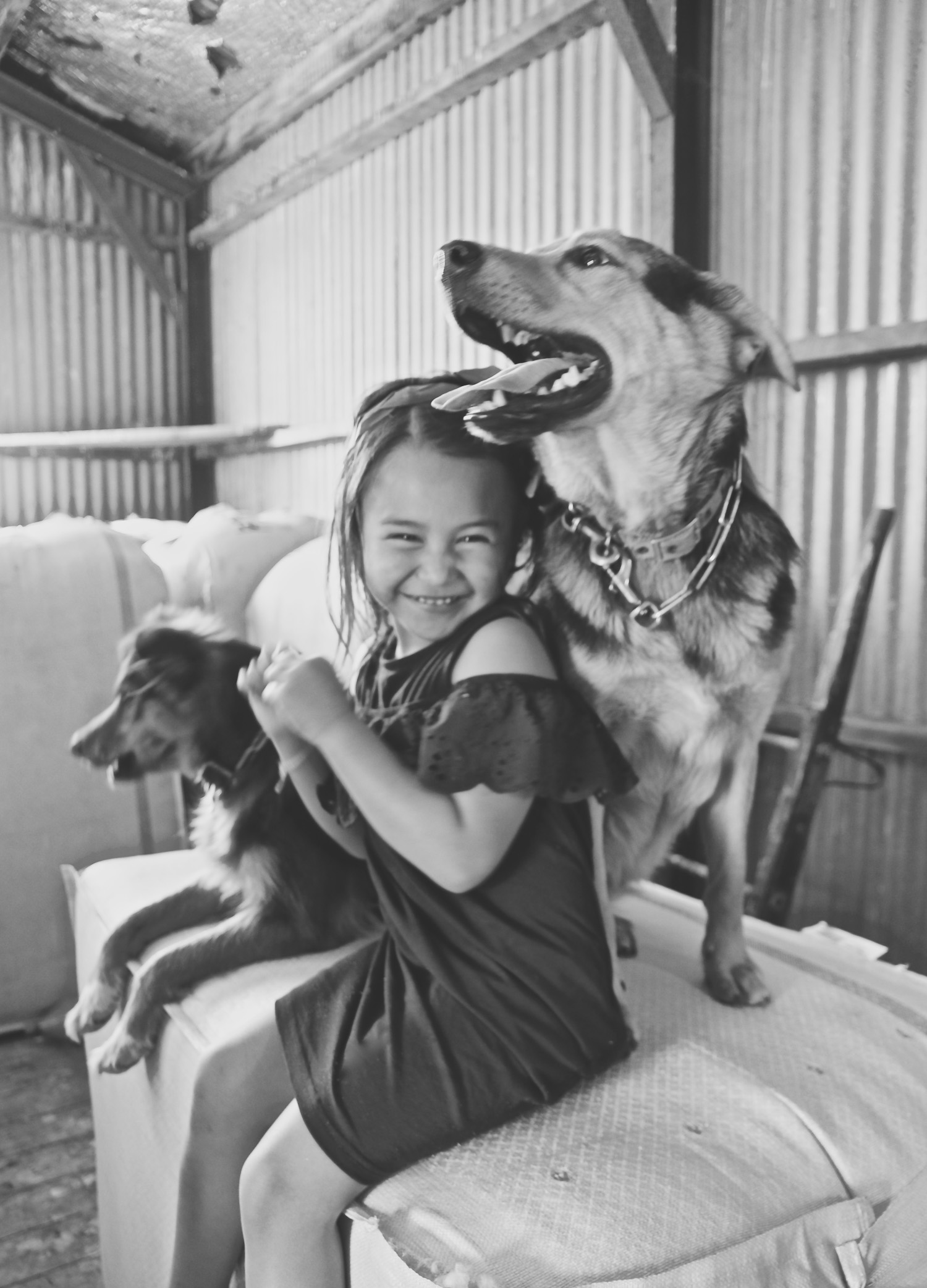 black-and-white-image-of-little-girl-with-farm-dogs-in-woolshed_L-R.jpg