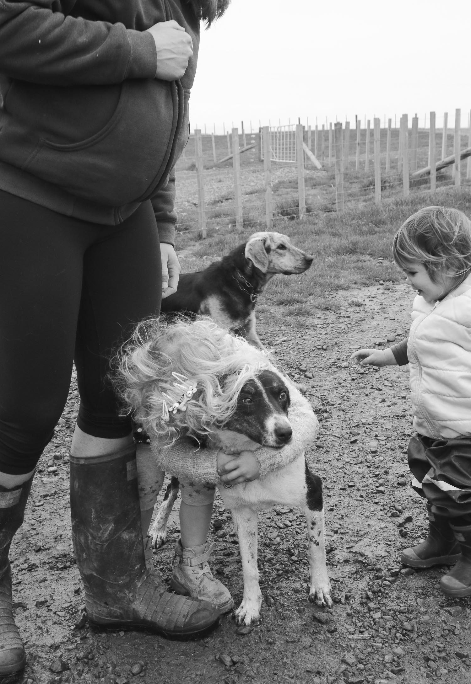 two-little-sisters-playing-with-dogs-at-mums-feet-mum-is-heavily-pregnant-all-wearing-gumboots.jpg
