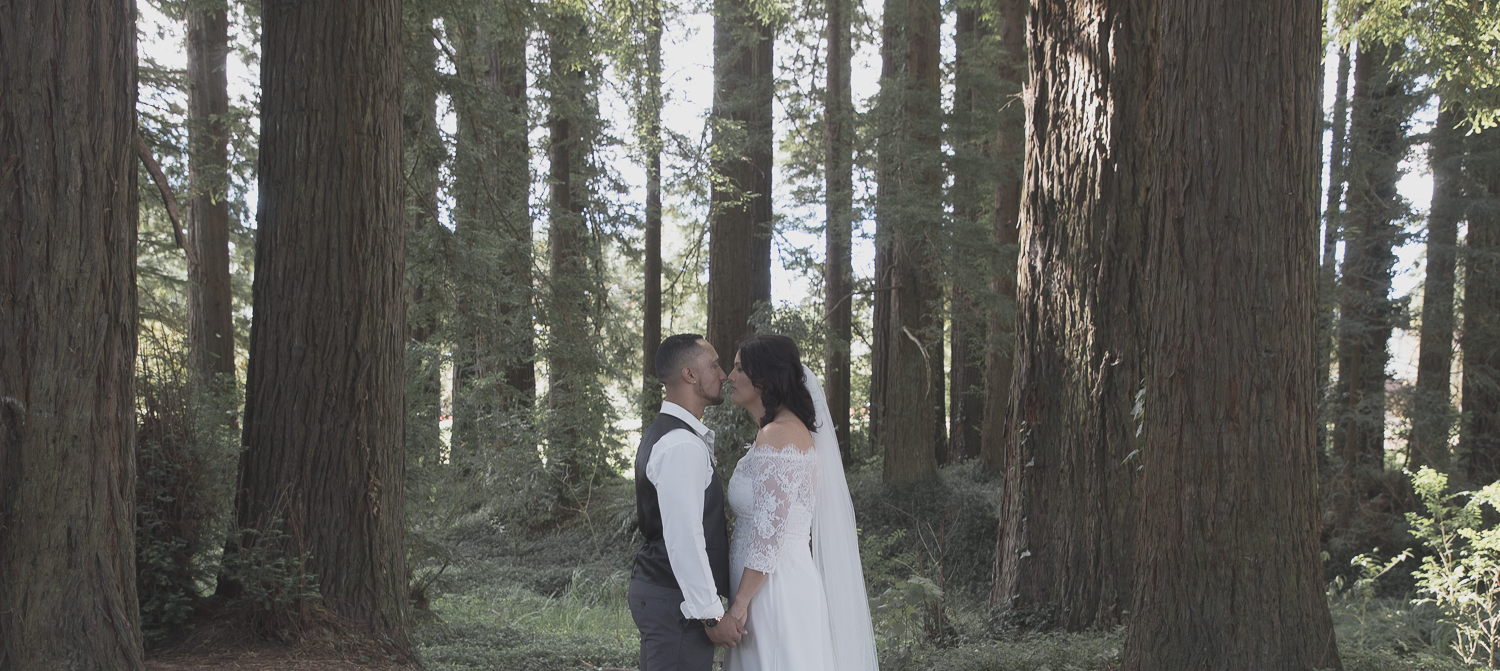 bride and groom in redwoods forest