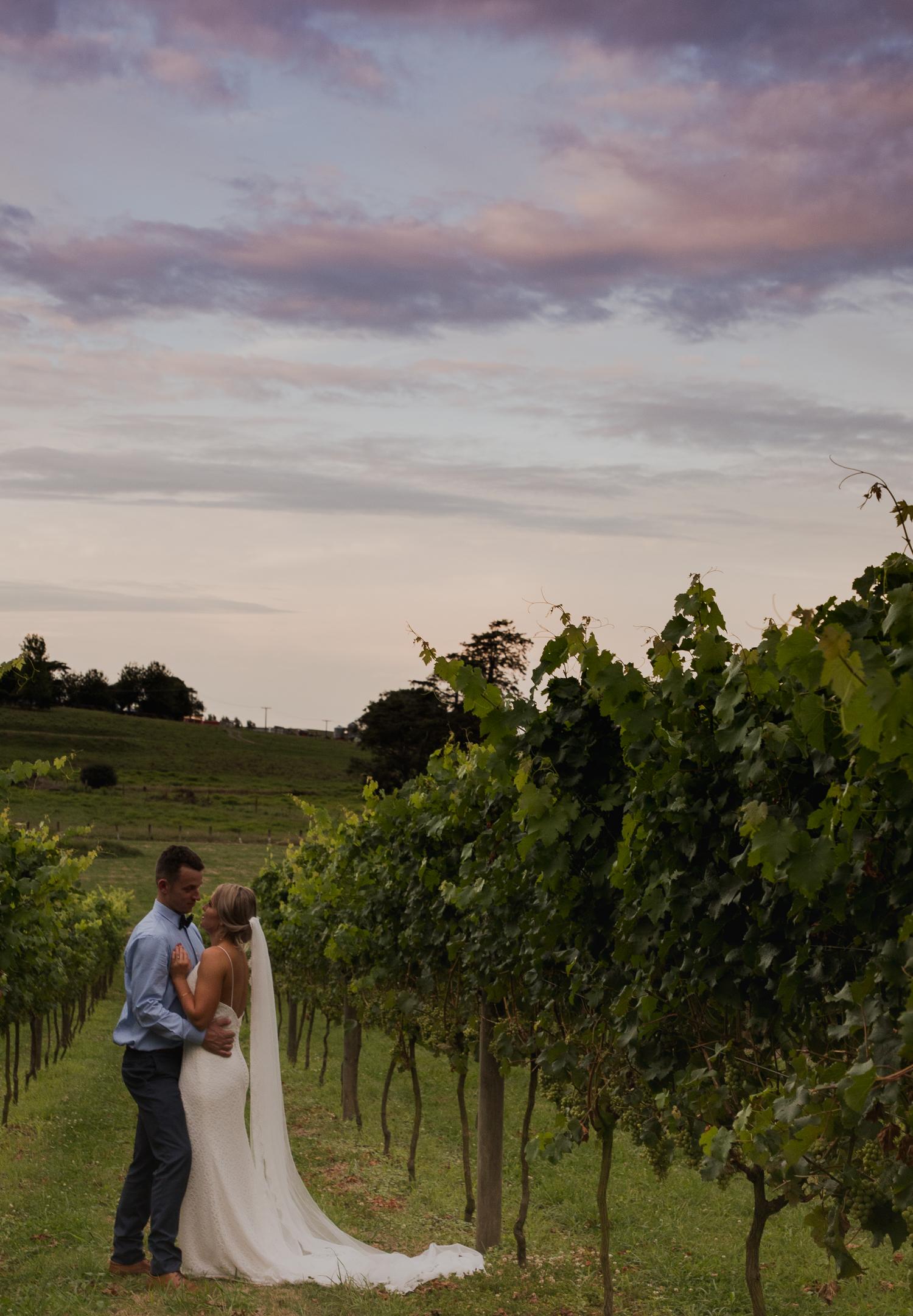 bride and groom at vilagrad winery
