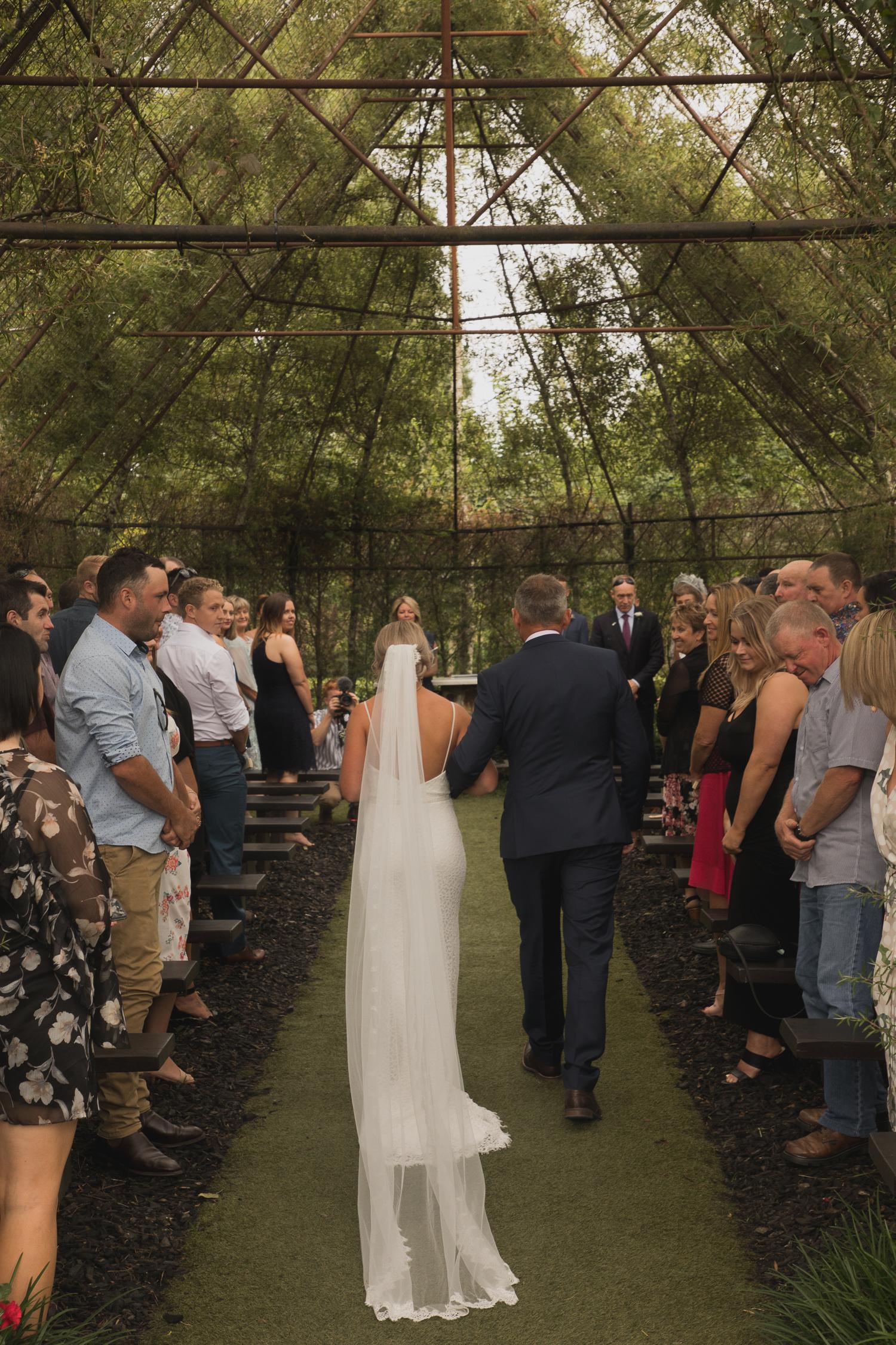 bride arriving at Ohaupo Tree Church