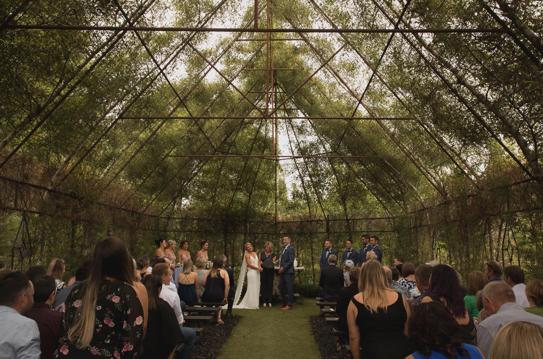 Ohaupo Tree Church - Moorhouse Wedding   Photos for Jean