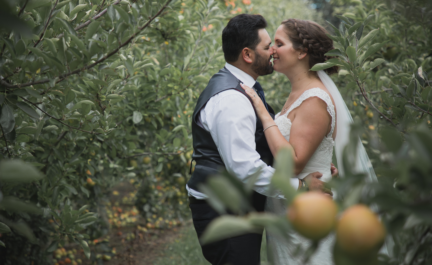 bride and groom together on wedding day in Hawkes Bay Apple Orchard