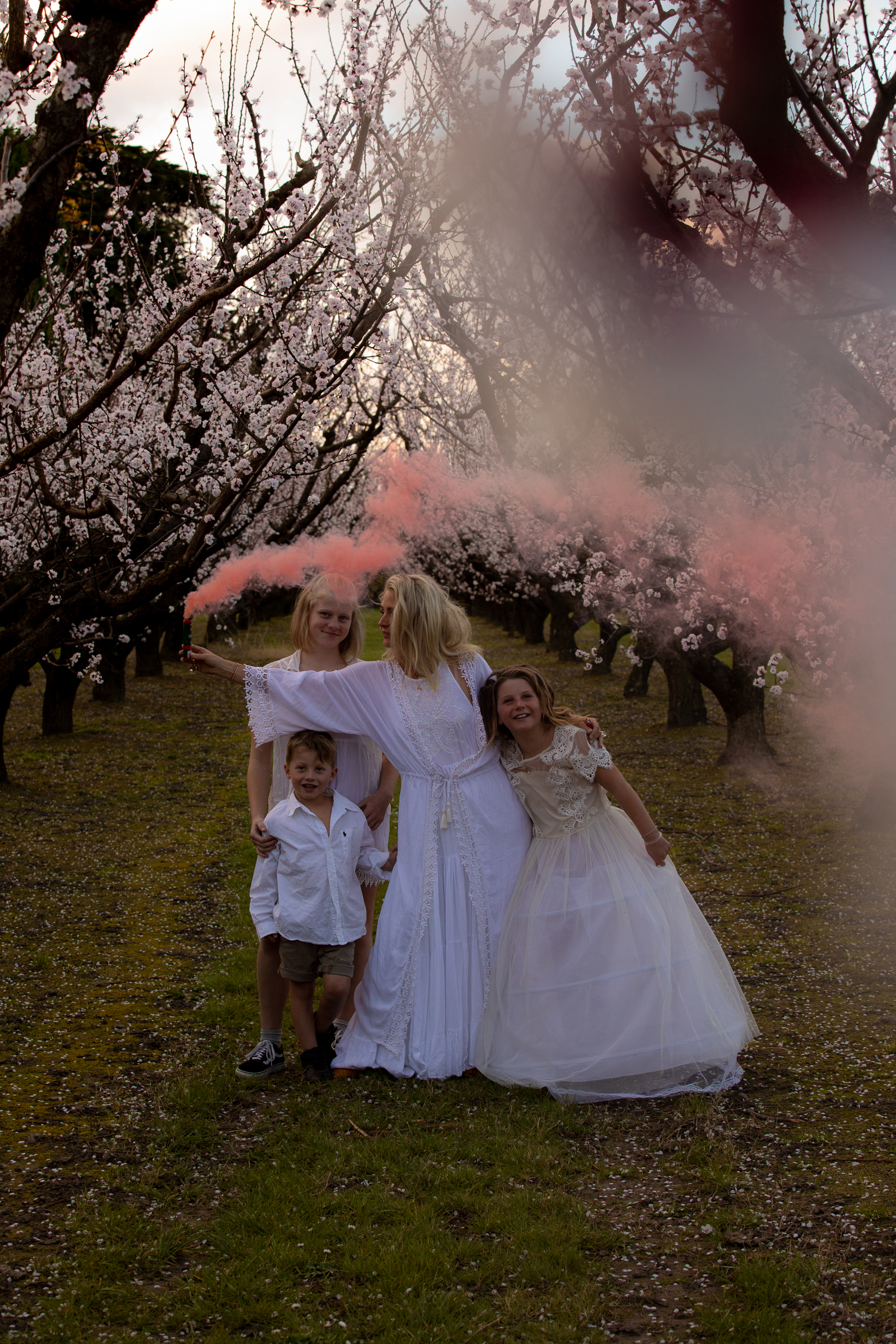 pink smoke bomb in blossoms