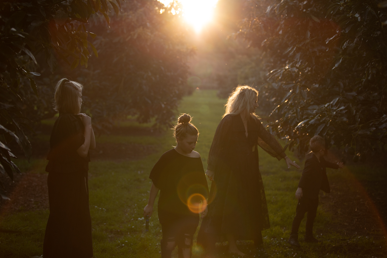 family in black at sunset in avocado orchard