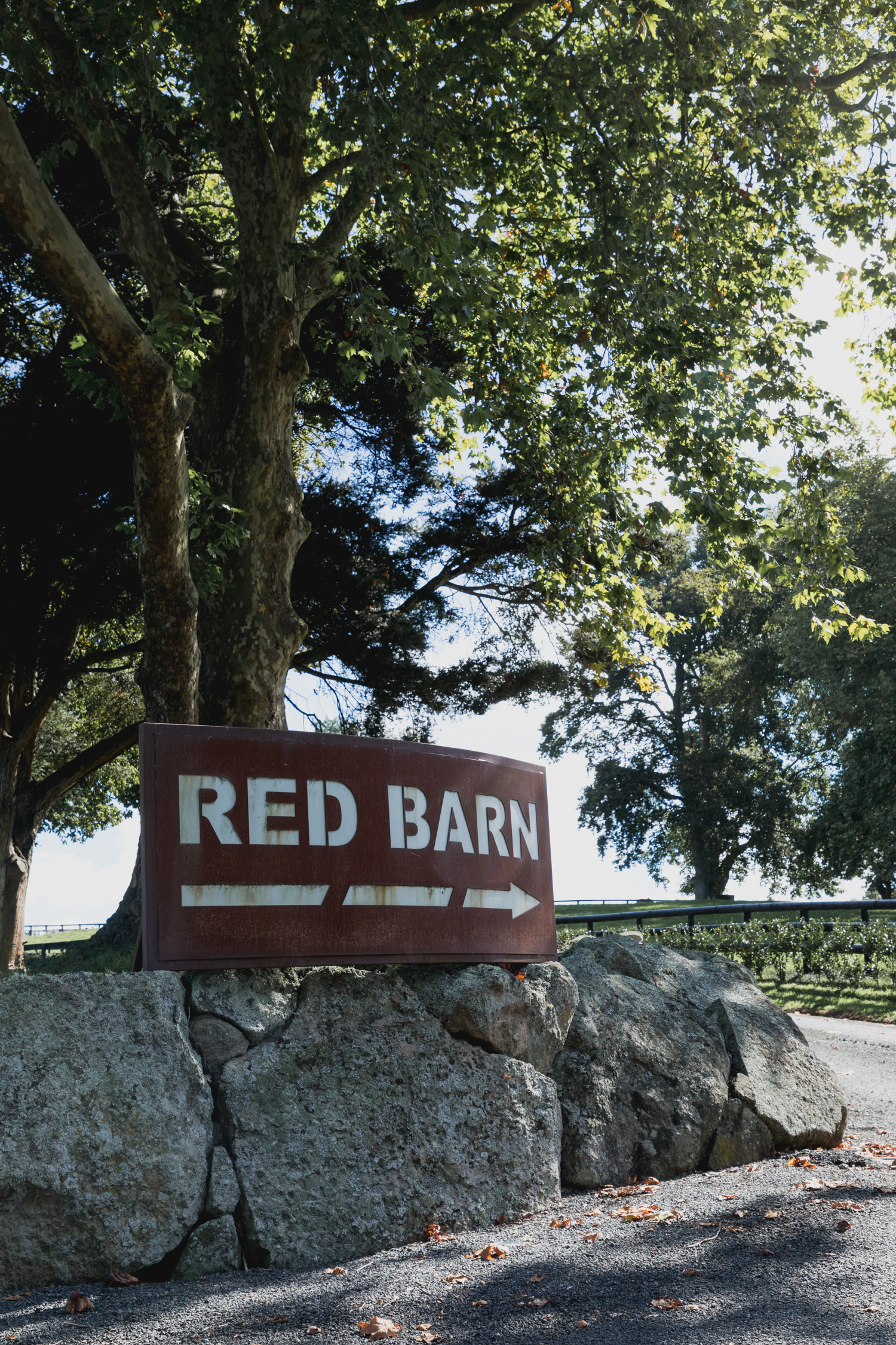 wedding-at-the-red-barn-new-zealand-wedding-photographer-front-sign.jpg