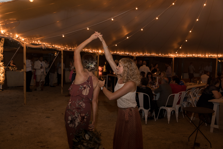 black-barn-winery-wedding-hawkes-bay-wedding-photographer-guestst-dancing-in-lights.jpg
