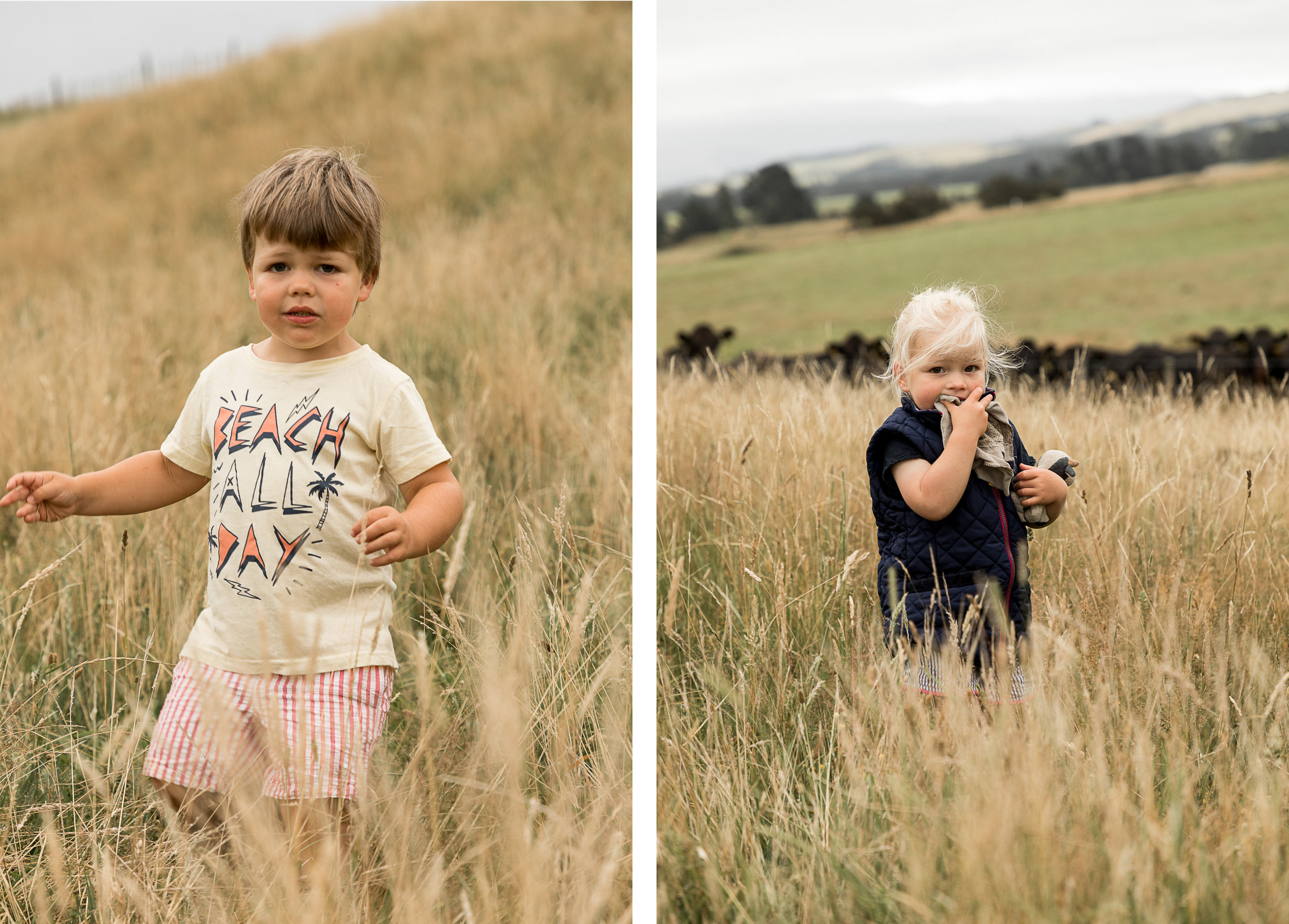 kids playing in the long grass on their farm