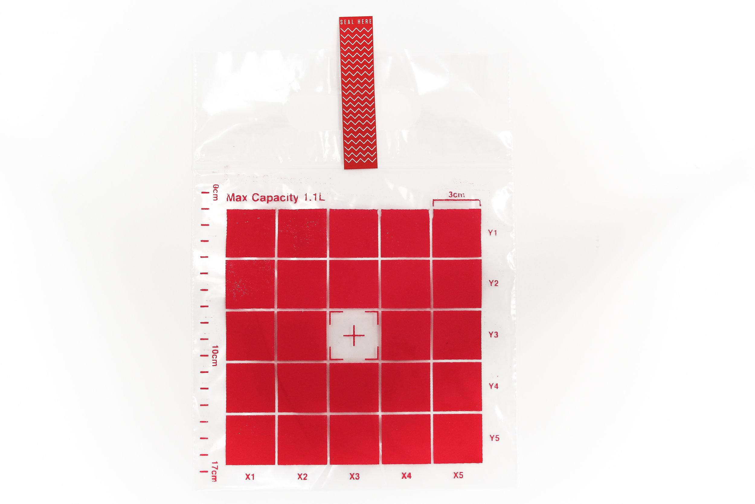 Redbag (1 of 1).jpg