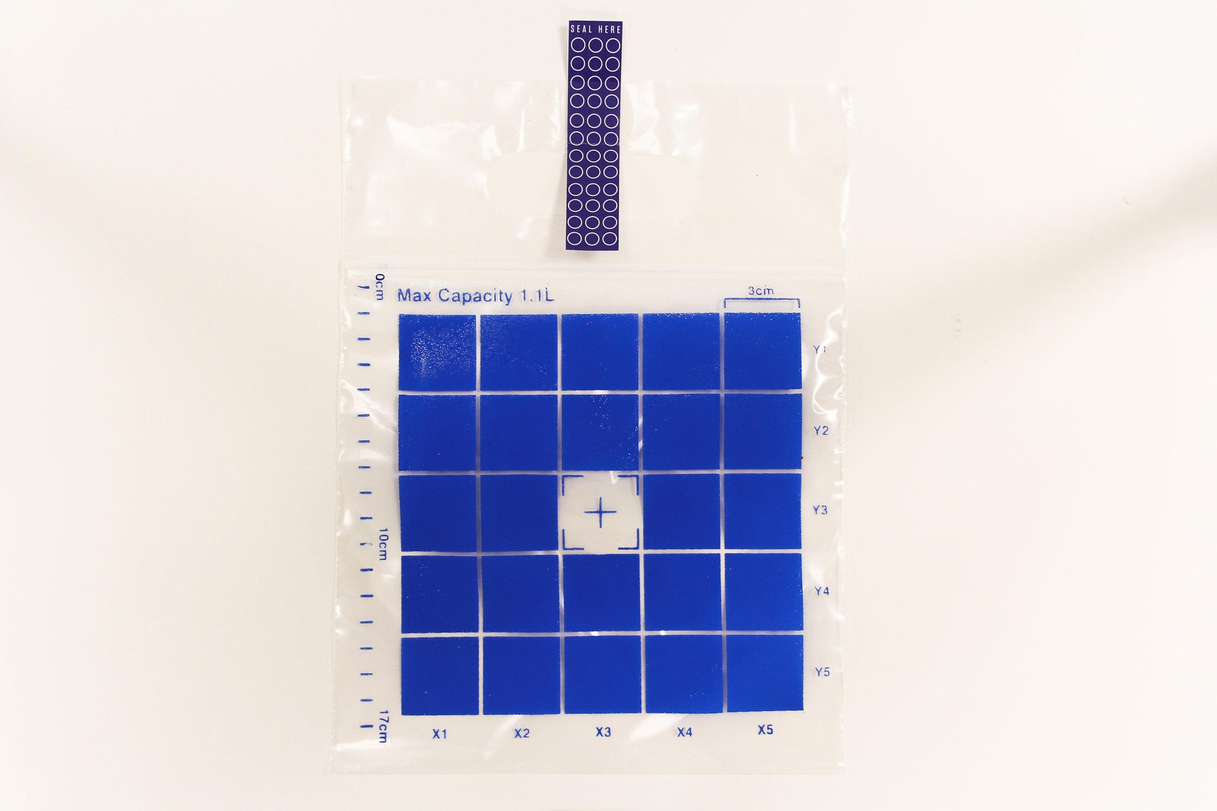 Bluebag (1 of 1).jpg