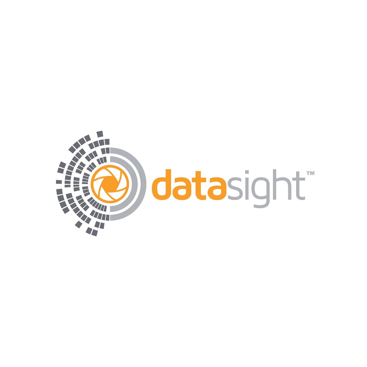Datasight logo.jpg