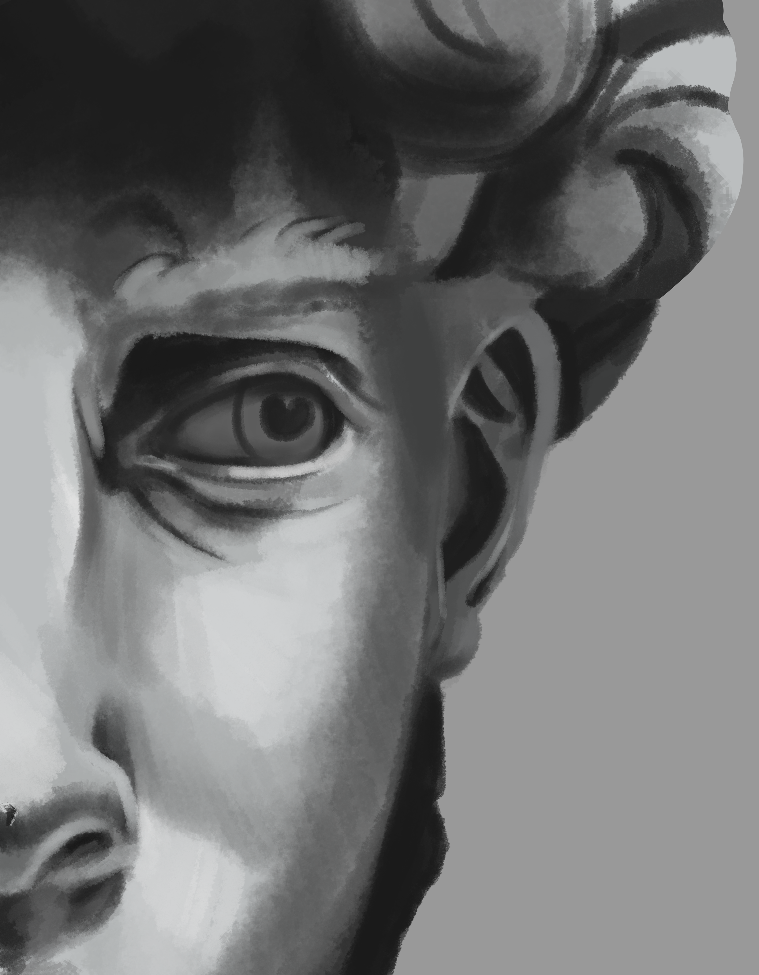 30-minute study of  Linda Hubert' s drawing of David.   Link:  https://imaginee.deviantart.com/art/The-Face-Of-David-195293532