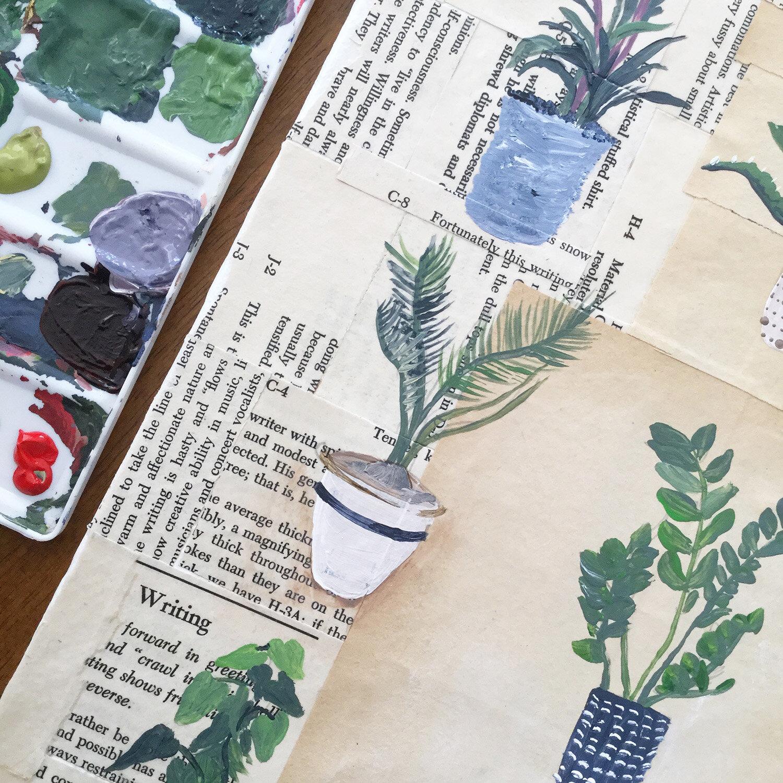 7 Succulents.jpg