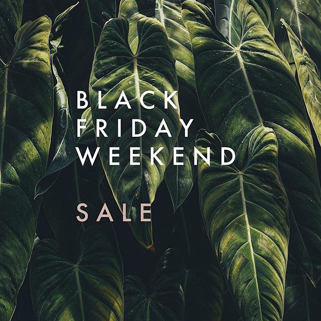 Black Friday Weekend starts NOW at Virgo! Check out ilovevirgo.com/black-friday to get your FREE service upgrades now through Cyber Monday!💕 • • • • • #blackfriday #losangelessalon #silverlakesalon #losfelizsalon #echoparksalon #salonlosangeles #losangeleshair #plants #houseplants #philodendron #philodendrongloriosum #leaves #houseplants