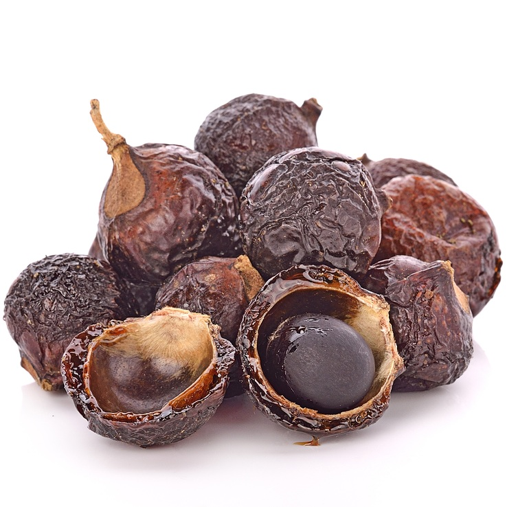 Soap Nut  contains saponin, an effective antibacterial agent and natural cleanser.