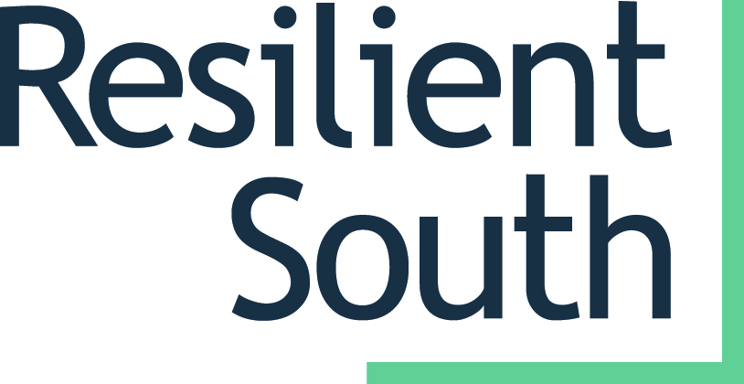 Resilient South