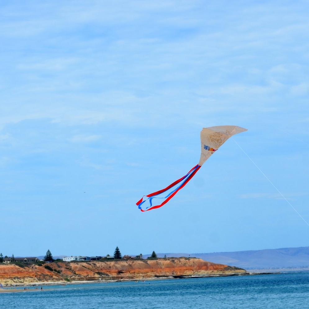 kites happy.JPG