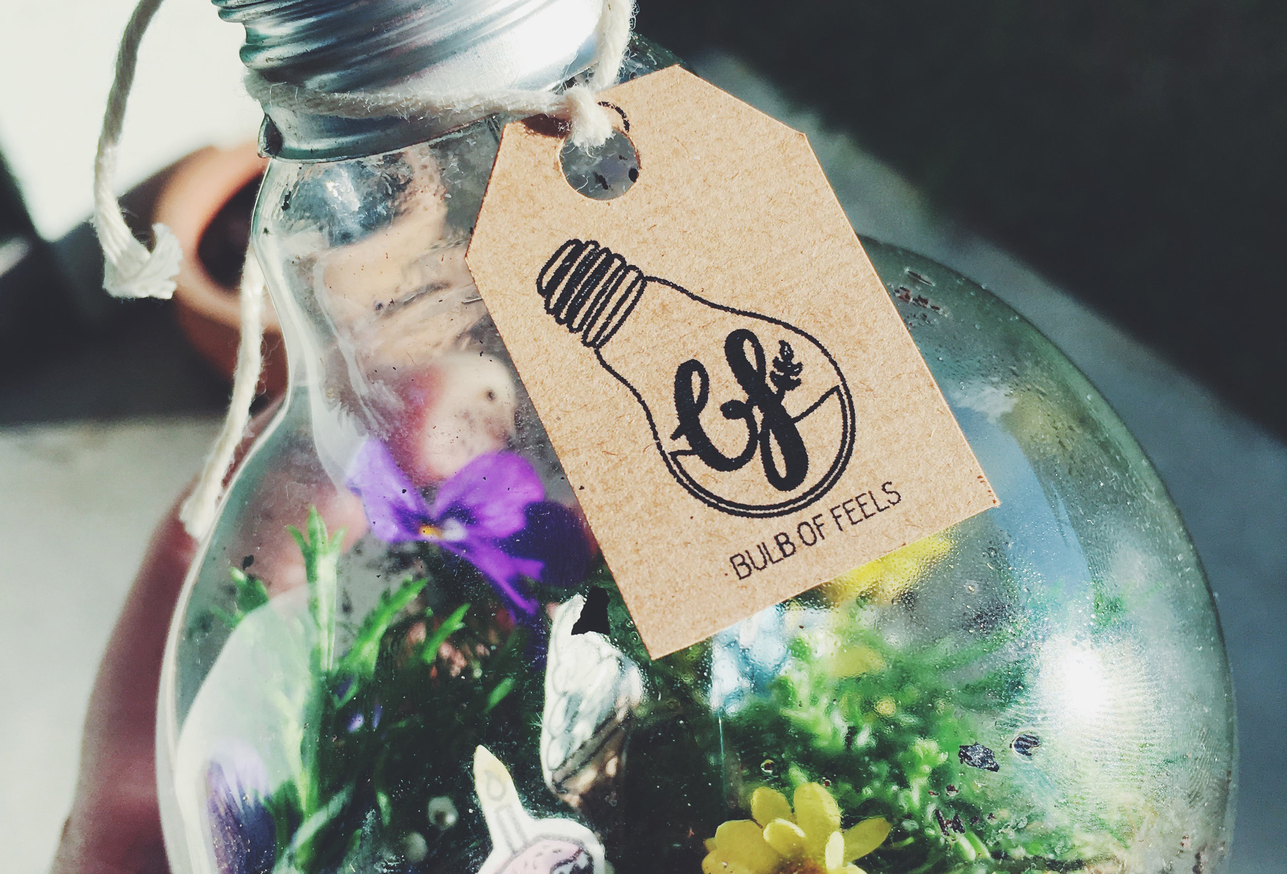 Bulb of Feels - The aim of this assignment was to develop a creative product that applied creative strategies, such as synetics. The purpose was to essentially create a terrarium that incorporates plants and images that associate to specific emotions, in order to address the issue of lifeless workspaces. A logo, business card, packaging, labels, and letterhead were then designed to brand the 'Bulb of Feels' light bulb terriariums.