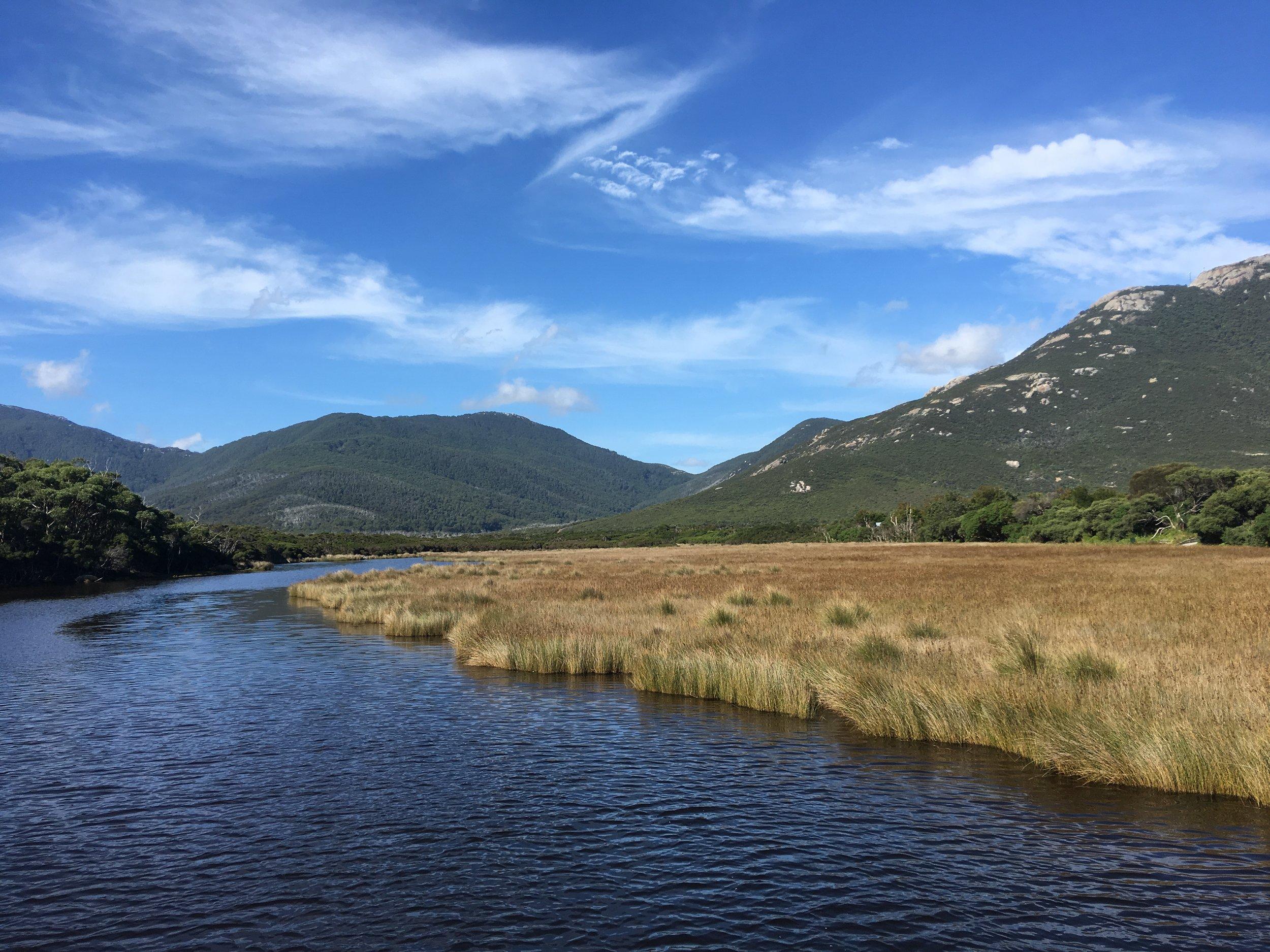 Tidal wetland river