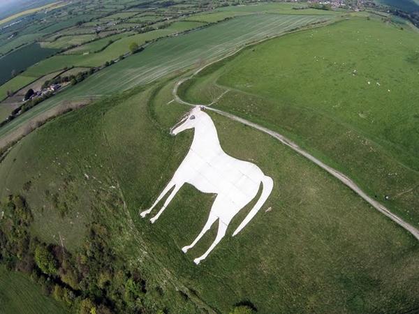 westbury-white-horse.jpg