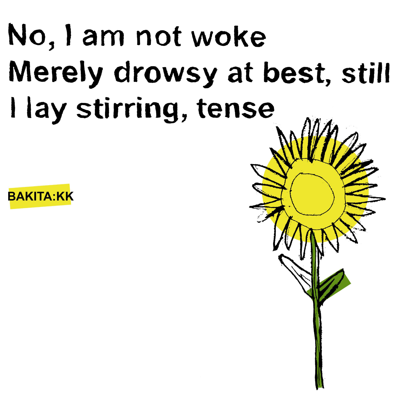 Sunflower - I am not woke....jpg