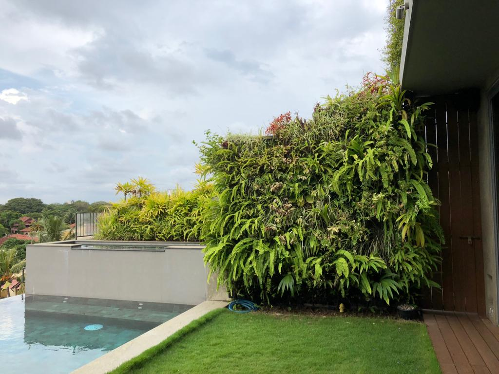 Amila de Mel - The Ebony Tree apartments